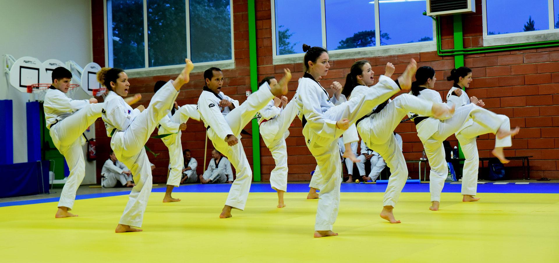 Team Demo Koryo Taekwondo